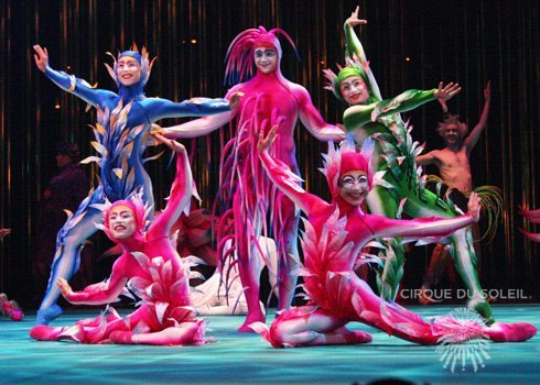 Fantasias Cirque du Soleil - LUZ