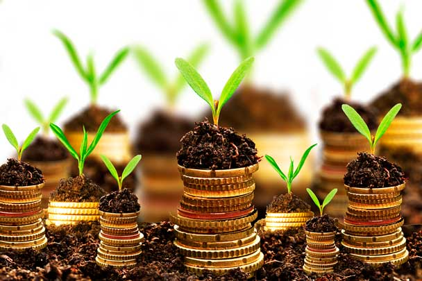 How to Invest - Business Plan