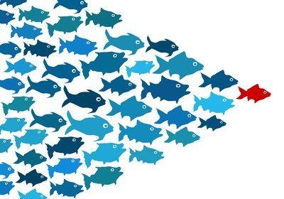 liderança - processos de gestão de pessoas