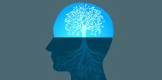 o que é mindset?