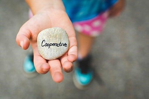 O que é uma cooperativa, como criar e gerir uma?